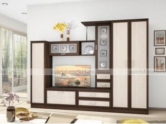 Гостиная Поло 8, Мебельная фабрика Астрид-Мебель, г. Пенза